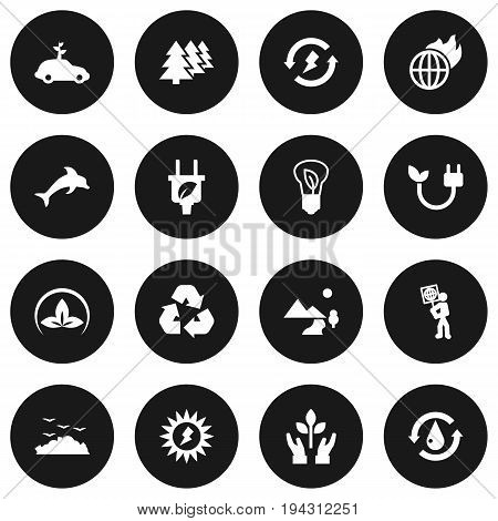 Set Of 16 Ecology Icons Set.Collection Of Energy, Car, Reforestation And Other Elements.
