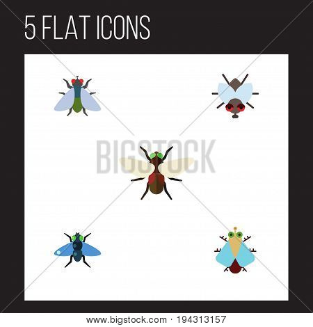 Flat Icon Fly Set Of Dung, Buzz, Bluebottle And Other Vector Objects. Also Includes Bluebottle, Fly, Insect Elements.