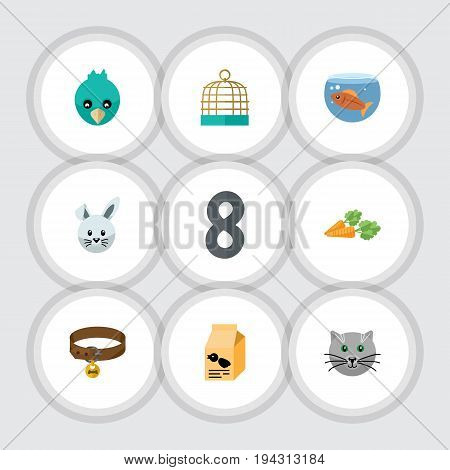 Flat Icon Animal Set Of Nutrition Box, Bird Prison, Fishbowl And Other Vector Objects. Also Includes Dog, Wing, Collar Elements.