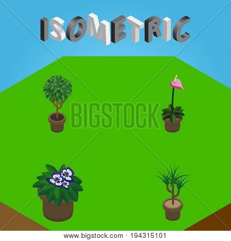 Isometric Houseplant Set Of Grower, Tree, Flowerpot And Other Vector Objects. Also Includes Plant, Botany, Flowerpot Elements.