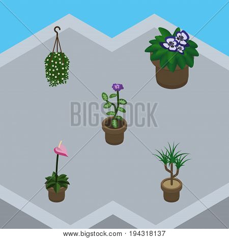 Isometric Plant Set Of Flowerpot, Flower, Blossom And Other Vector Objects. Also Includes Pot, Plant, Blossom Elements.