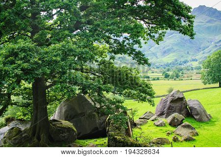 Lake District National Park, England landscape, mountains on the background, selective focus