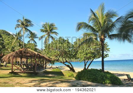 A tropical beach with a thatched hut
