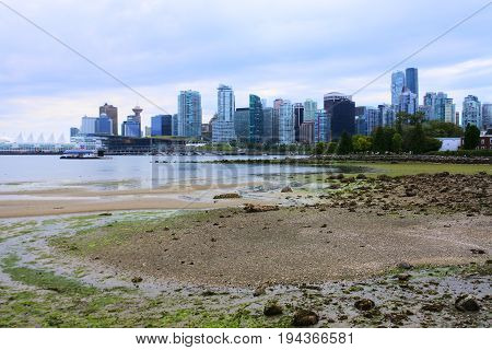 This is a view of the Vancouver skyline in Stanley Park.