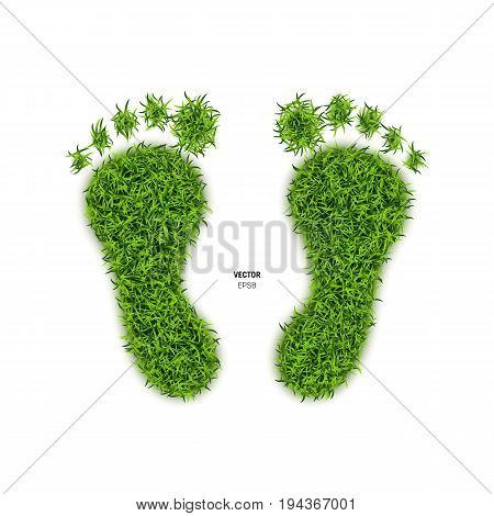 Foot Print Made of Green Grass. Footprint or Barefoot Eco Wildlife Symbol on White Background. 3d Illustration