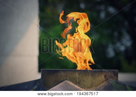 The Eternal Flame burns in memory of the millions of Soviet soldiers. Day of Remembrance