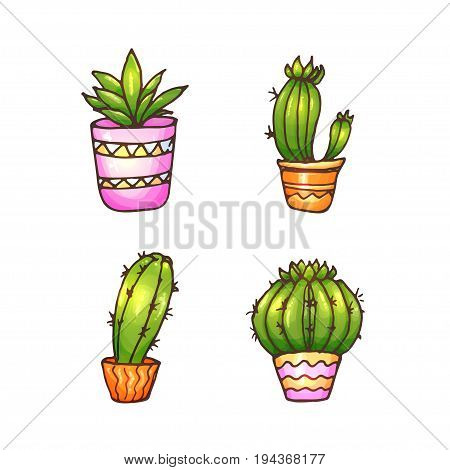 Cactus and succulents illustration. Vector plants in a pots. Hand drawn doodle cacti.