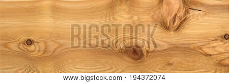 Larch wood massive plank texture for CG