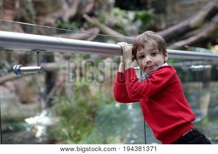 Child In Zoo