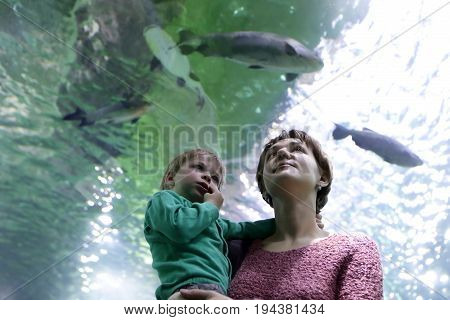 Mother with son looking at fishes in aquarium