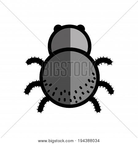spider insect animal and dangerous symbol icon vector illustration