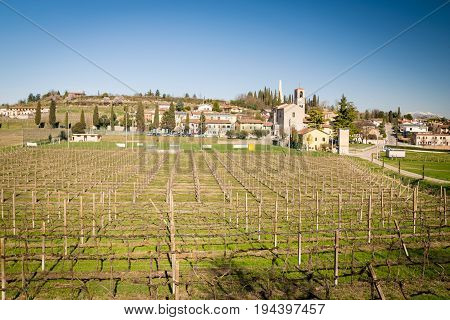 View of Custoza surrounded by the vineyards that produce the famous eponymous white wine.
