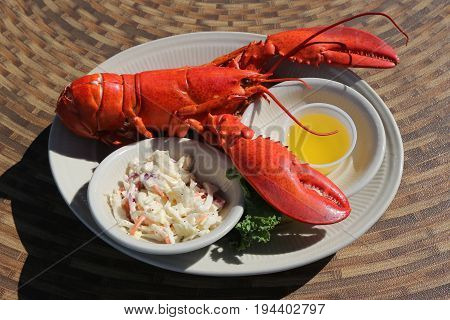 Traditional lobster bake served in Maine's restaurant