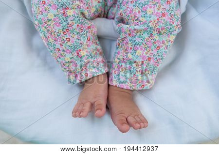Close up foot of newborn girl when she was sleeping on the bed in the garden. Parenthood. Motherhood. Fatherhood. Family. poster