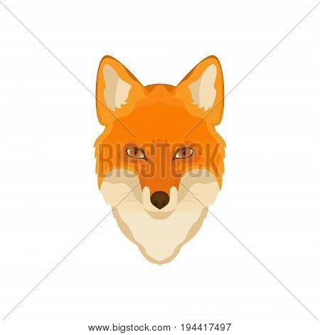 Orange Fox head. Vector image. Wild animal wildlife hunting zoo.