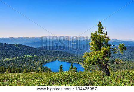 Scale View Of Mountain Taiga