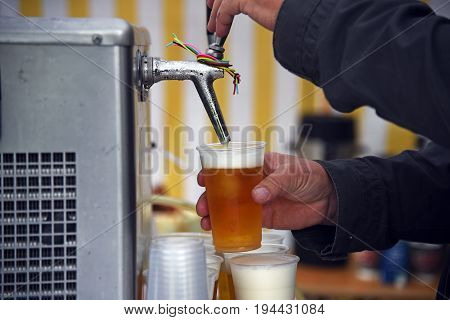 Man's hands at a beer tap pouring beer in plastic glasses in a marquee or tent at an open air festival event