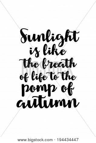 Handwritten calligraphy quote and autumn motives. Sunlight is like the breath of life to the pomp of autumn.