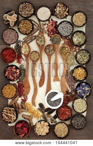 Natural alternative medicine selection of dried herbs and flowers in wooden spoons and bowls with mortar and pestle on parchment over oak background.