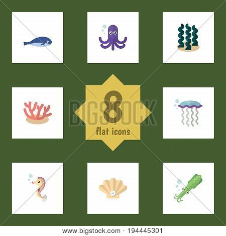Flat Icon Sea Set Of Alga, Conch, Tentacle And Other Vector Objects. Also Includes Coral, Sea, Whale Elements.