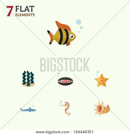Flat Icon Sea Set Of Alga, Hippocampus, Sea Star And Other Vector Objects. Also Includes Cockleshell, Star, Alga Elements.