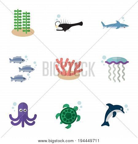 Flat Icon Sea Set Of Shark, Tuna, Playful Fish And Other Vector Objects. Also Includes Algae, Fish, Tuna Elements.