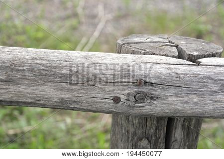 A Fragment Of The Fence