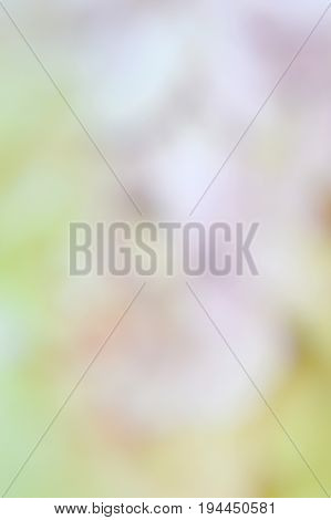 Abstract Color Blur Background