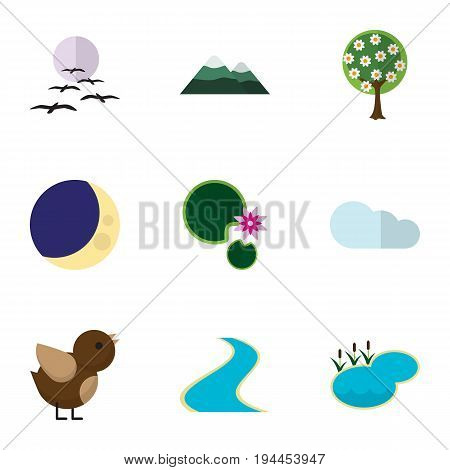 Flat Icon Nature Set Of Half Moon, Bird, Tributary And Other Vector Objects. Also Includes Bird, Water, Midnight Elements.