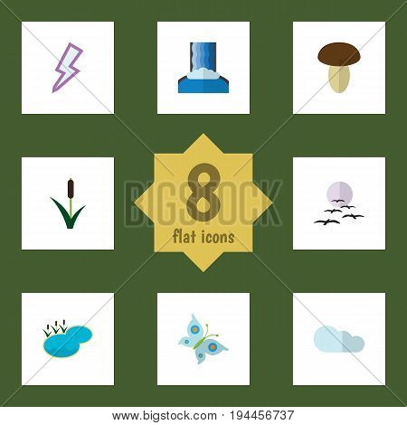 Flat Icon Ecology Set Of Gull, Pond, Monarch And Other Vector Objects. Also Includes Waterfall, Pond, Lagoon Elements.