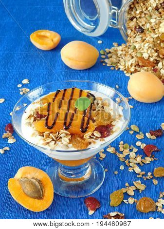 Portioned layered yogurt dessert decorated with apricots and chocolate topping