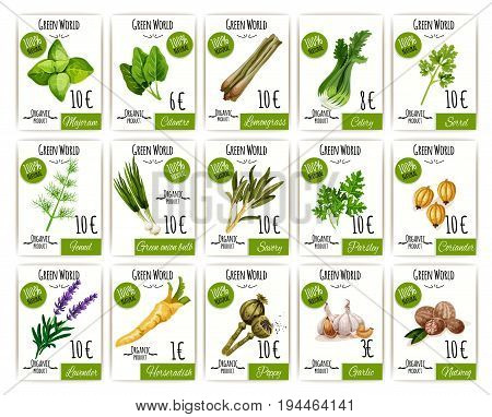 Herb and spices tag or labels with price and basil, rosemary, mint, thyme and green onion, garlic and parsley, nutmeg, marjoram, celery and fennel, coriander, sorrel, lavender and poppy cartoon icon