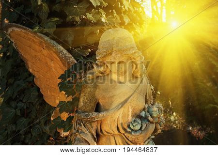 angel in the sunlight (antique statue) close up