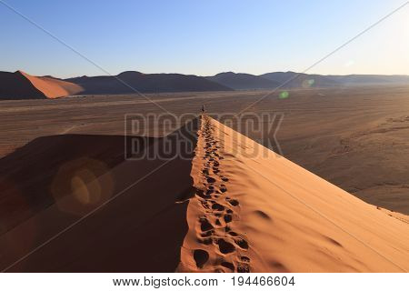 Dune 45 At Sossusvlei, Namib Naukluft National Park, Namibia. Real Lens Flare Effect.