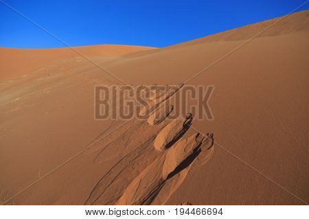 Footprints At Dune 45 At Sossusvlei, Namib Naukluft National Park, Namibia