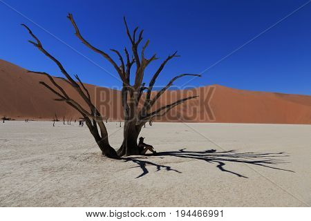 Silhouette of lonely girl at Deadvlei, Sossusvlei. Concept of wanderlust in namibian famous desert. Adventure trip travel to african wonders in Namibia