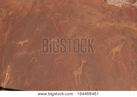 Bushman Prehistoric Rock Engravings At The Unesco World Heritage Center In Twyfelfontein Namibia