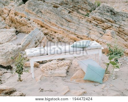 Summer vacation in nature, decor for a party on the beach, outdoor. Concept of spring freshness, botany, biology.
