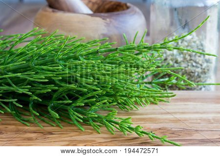 Fresh Horsetail Twigs On A Wooden Background
