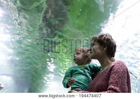 Woman with child looking at fishes in aquarium