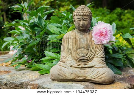 Small Meditating Buddha Statue with Pink Peony Flower Resting On Its Shoulder