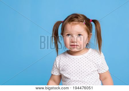 A cute little girl is smiling on a blue isolated background with pig tails for a happiness or childhood concept. Little girl in a white T-shirt
