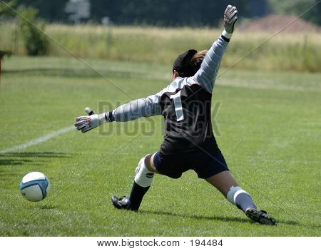 Acrobatic Goalie
