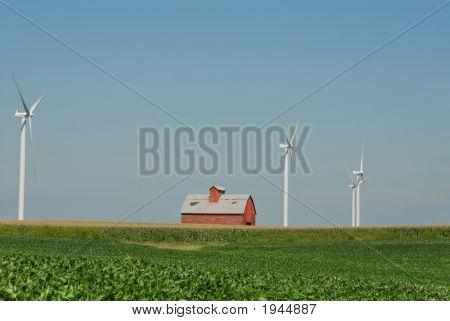 Wind Farm 11