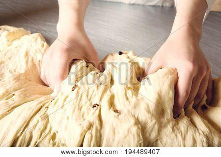 Closeup of baker's hands kneading bread dough in bakery