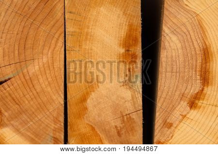 Ends of Juniper Boards with Tree Rings