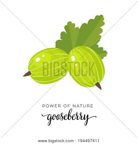 Green gooseberry berry flat icon with inscription colorful vector illustration of eco food isolated on white.