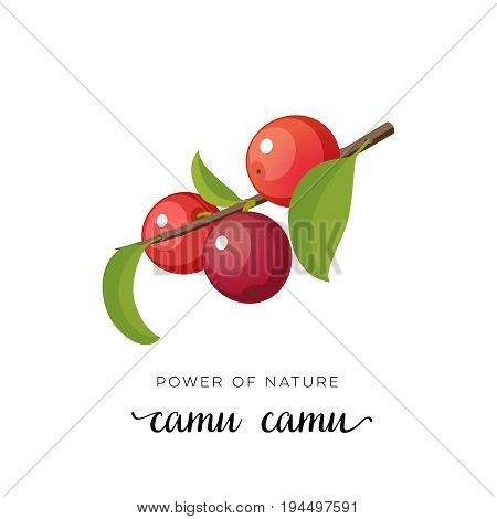 Red camu-camu berry flat icon with inscription colorful vector illustration of eco food isolated on white.