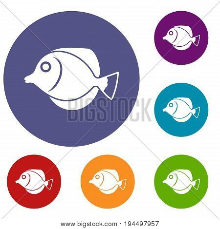 Tang fish, Zebrasoma flavescens icons set in flat circle reb, blue and green color for web