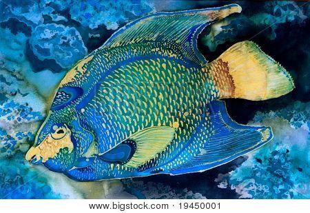 fish exotic poster